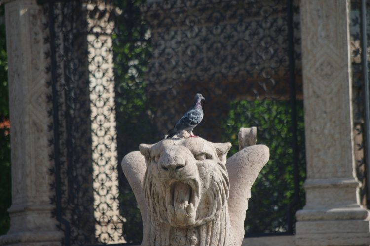 Pigeon and Griffon Brunswick Monument, Geneva, Switzerland